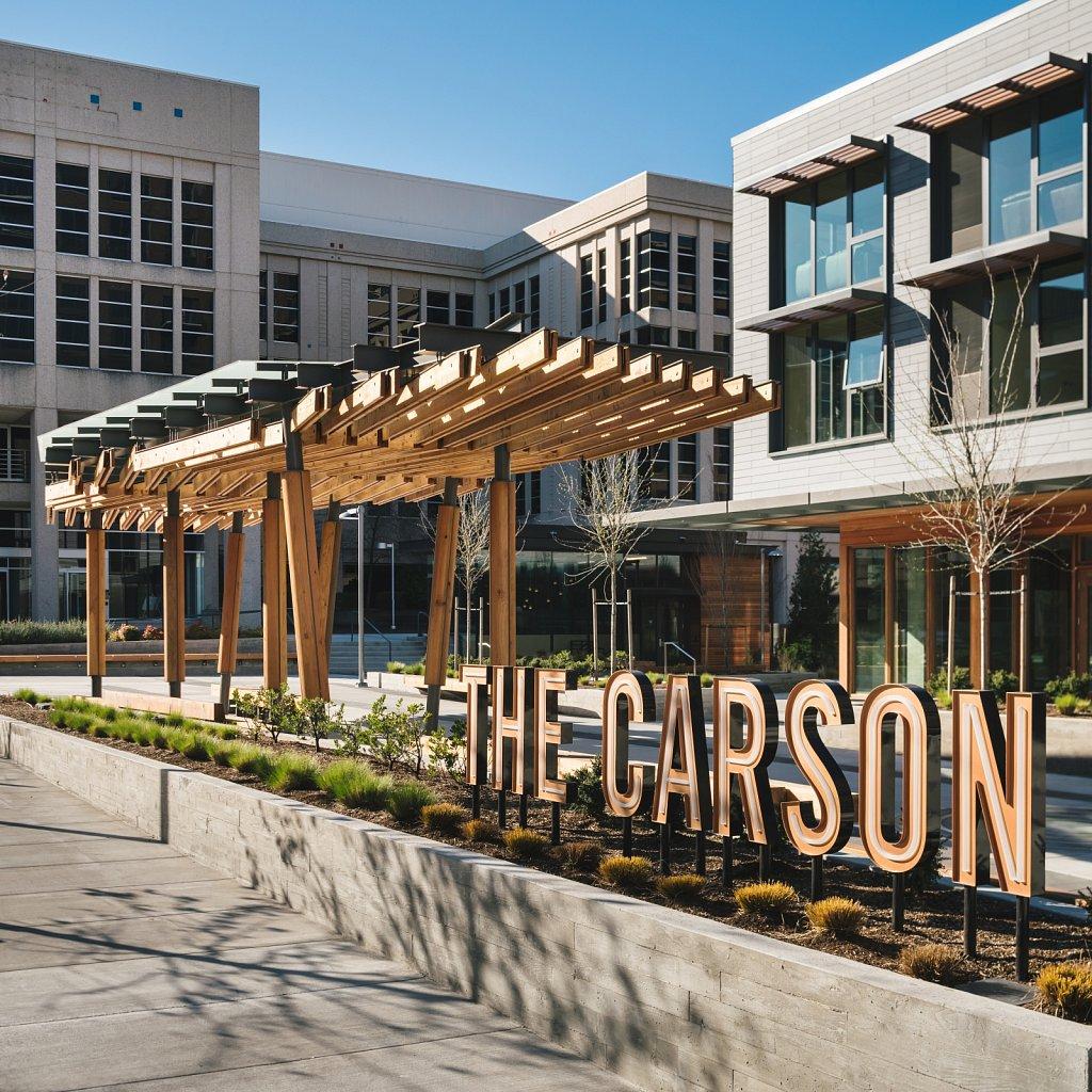 The Carson - V